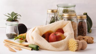 The Ultimate Natural Living  Shopping Guide