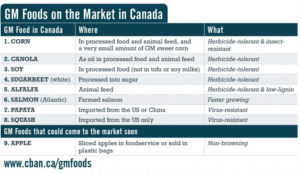 Genetically modified foods on the market