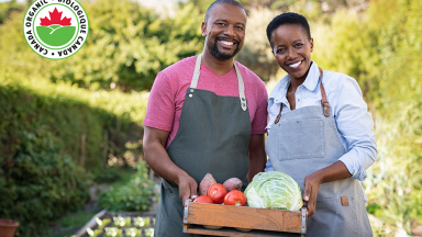 Five Ways to Live an Organic Lifestyle